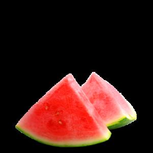 Malibu Watermelon Mojito